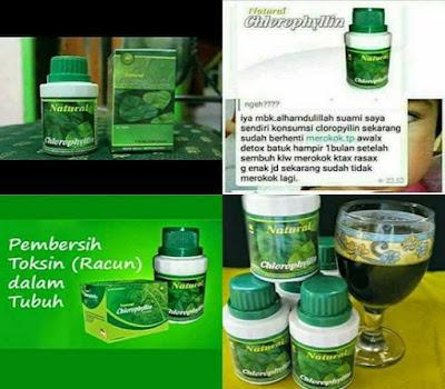 nchlo natural cholophylin