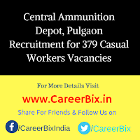 Central Ammunition Depot, Pulgaon Recruitment for 379 Casual Workers Vacancies