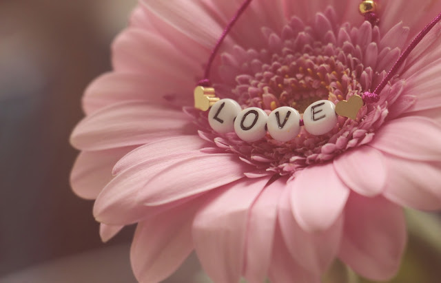 Ideal Jewelry Displays for the Month of Love