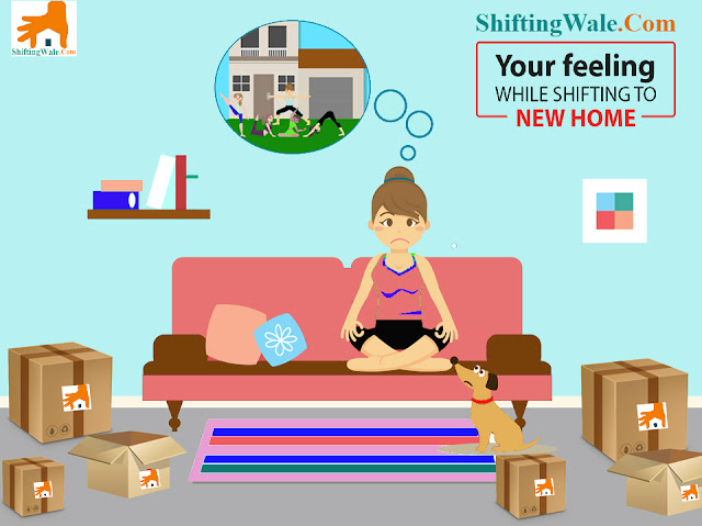 Packers and Movers Services from Noida to Ahmednagar, Household Shifting Services from Noida to Ahmednagar