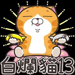臭跩猫爱呛人13-白烂猫超级嗨!