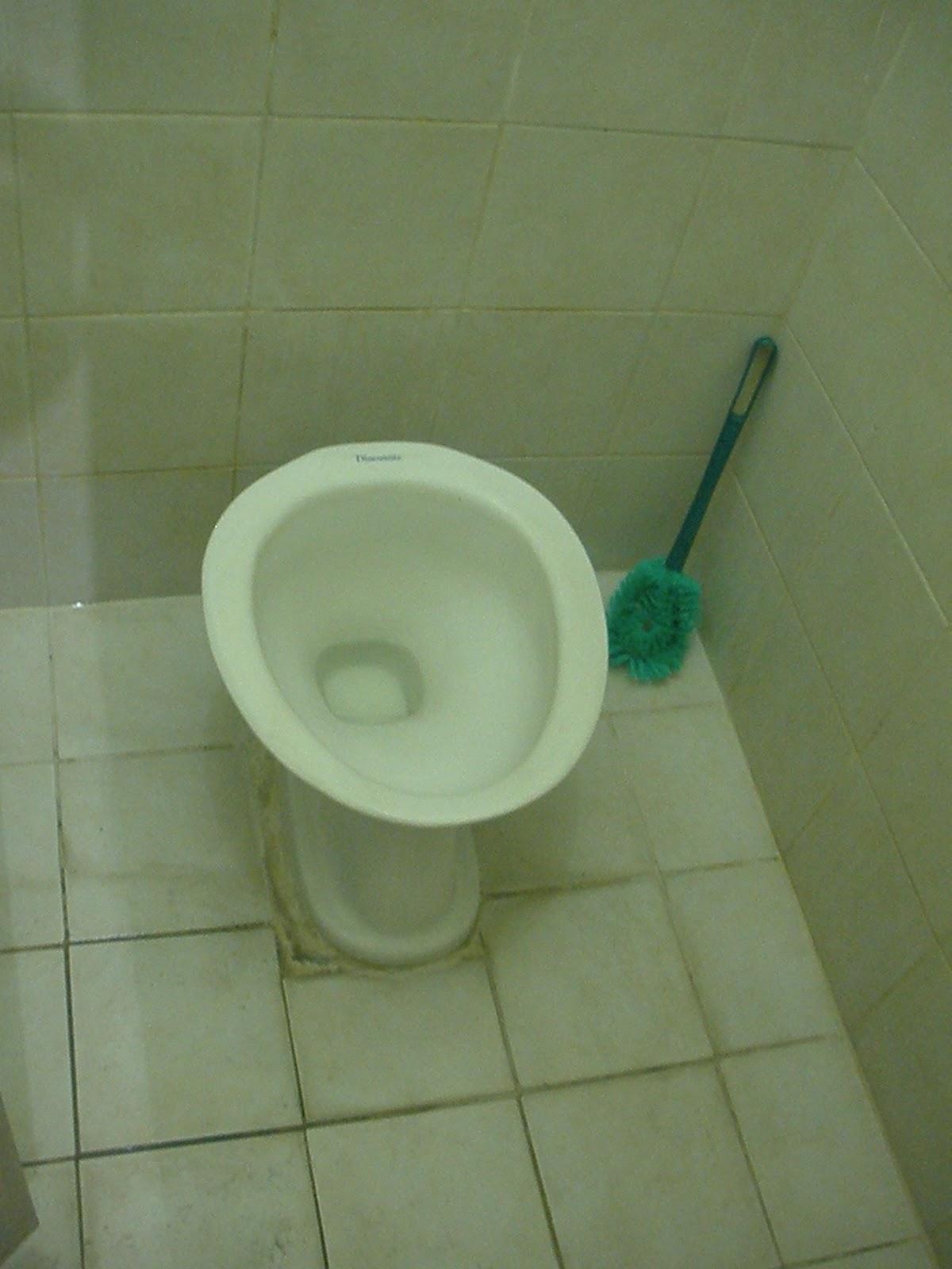 Kathryn S Blog Toilet Etiquette