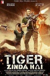 Streaming Film Tiger Zinda Hai Sub Indo