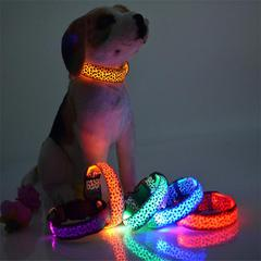 LED Dog Collar Review