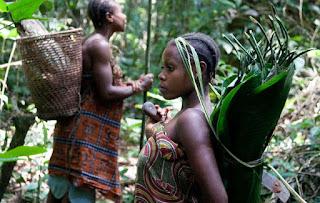 Tradicionalmente, pequeñas comunidades 'pigmeas' se trasladaban con frecuencia por territorios forestales y recogían una gran variedad de frutos del bosque, recolectaban e intercambiaban productos con sociedades vecinas sedentarias.