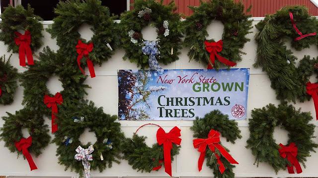 Woody Acres: Christmas Trees