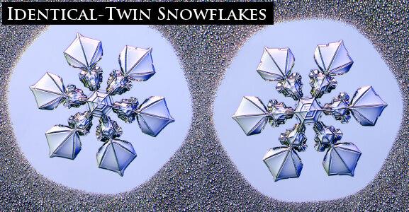 Снежинки-близнецы