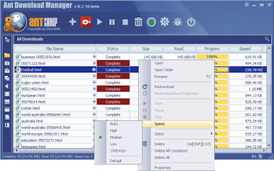 Ant Download Manager 1.11.0 Build 54887