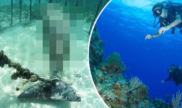 Gempar! Sekumpulan penyelam menemui haiwan laut yang terperangkap di dalam sangkar dalam keadaan yang menyayat hati
