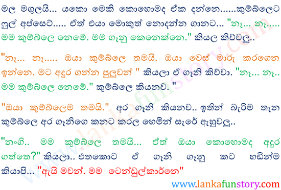 Sinhala Fun Story-Camouflage-Part Two