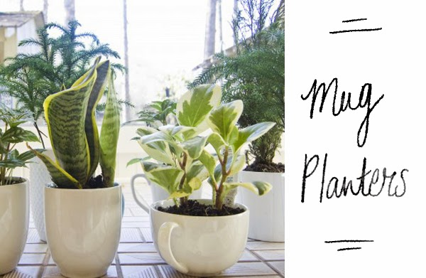 Happiness is... DIY Gifts - Mug Planters