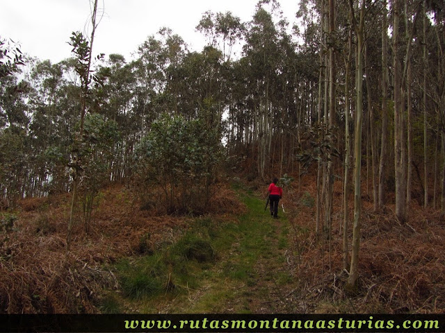 Rampa final al pico Prieto