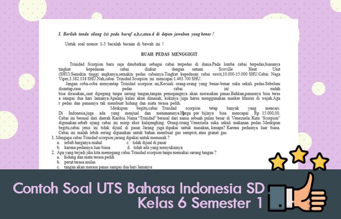 Contoh Soal UTS Bahasa Indonesia SD Kelas 6 Semester 1