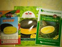 Cara menanam semangka, buah semangka, jual benih semangka, lmga agro