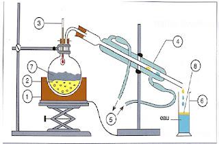 extraction, séparation et identification des espèces chimiques-Activités