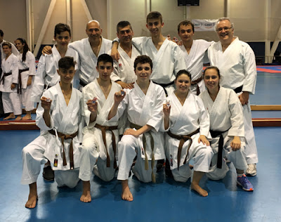 Karate Aranjuez