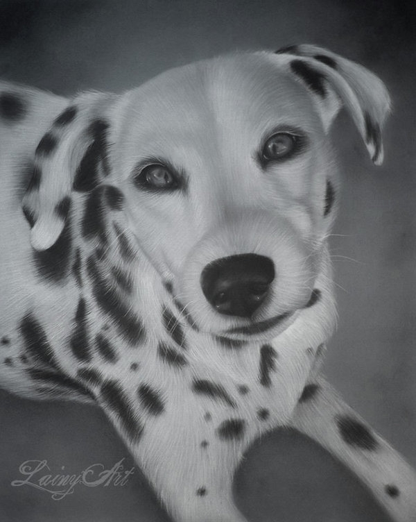 05-Sadie-Alaina-Ferguson-Lainy-Animal-Charcoal-Portrait-Drawings-www-designstack-co