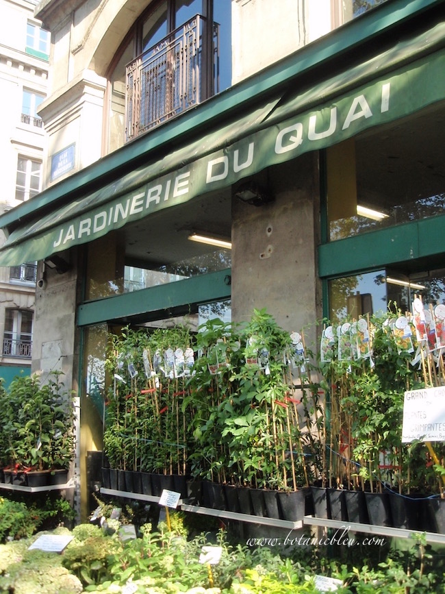 jardinerie-du-quai-garden-center-in-paris-sells-plants