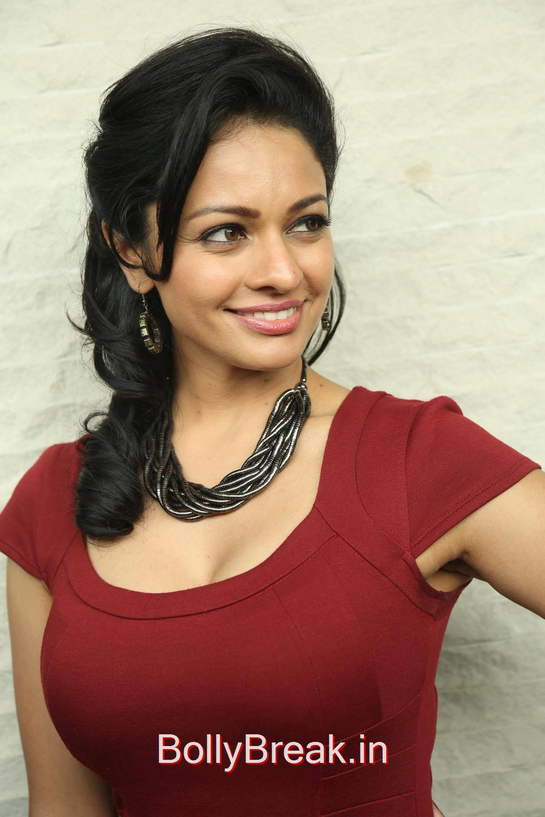 Pooja Kumar Photoshoot Stills, Hot HD Images of Pooja Kumar from Uttama Villain Movie Release Date Press Meet