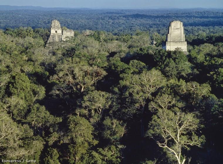 Ősi maja városokat fedeztek fel az őserdőben