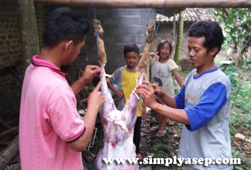 GANTUNG :  Setelah proses menguliti kambing selesai kemudian digantung untuk proses pemotongannya  Foto Asep Haryono