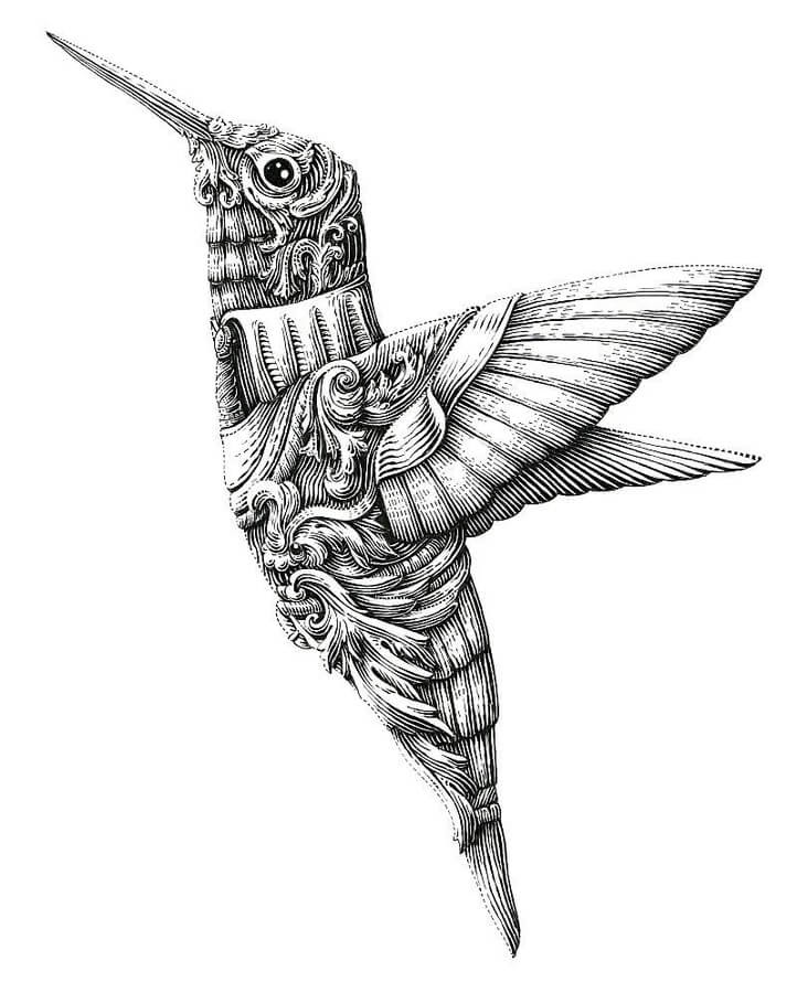 02-Hummingbird-Alex-Konahin-www-designstack-co