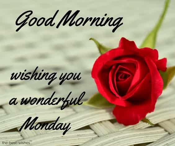 happy morning wishing you a wonderful monday
