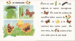 6 - Je lis avec les animaux de la campagne