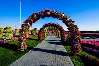 jardin con tunel de flores