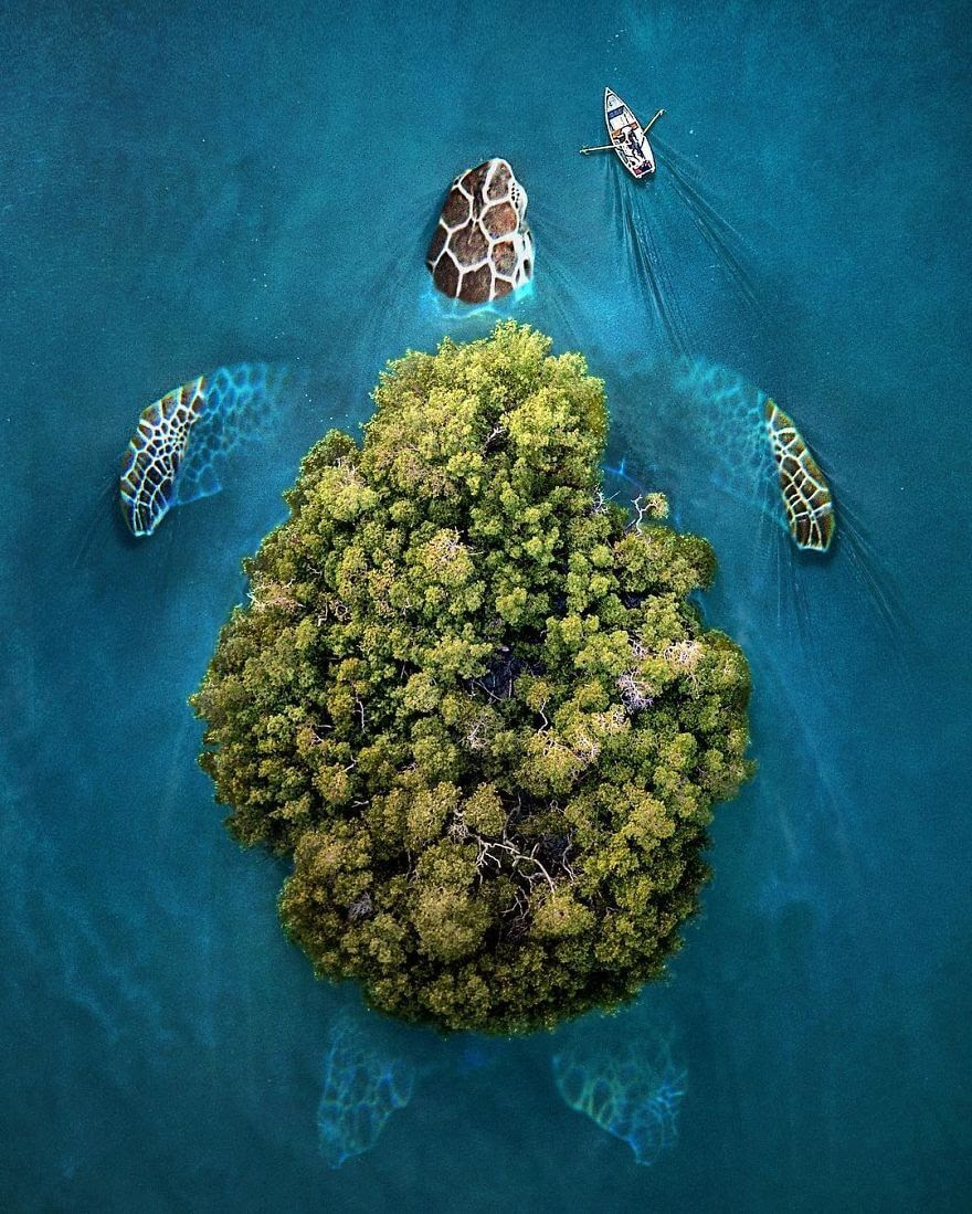 07-Sea-Turtle-Zulkarnain-Ismail-Art-and-nature-in-Surreal-Photo-Manipulation-www-designstack-co