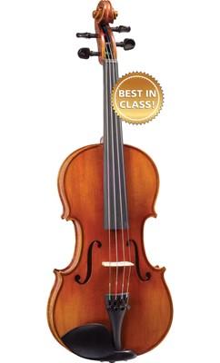 dan violon