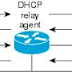DHCP relay and server