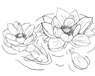 Mudahnya Belajar Menggambar Sketsa Bunga Teratai