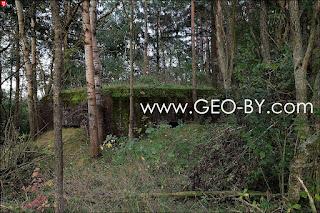 Четвертый найденный ДОТ. Полукапонир на опушке леса у Братково