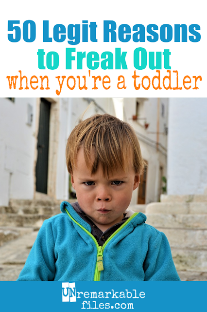 Oh, toddlers. The funniest things can trigger a tantrum or a meltdown for 1 year olds and 2 year olds, and this list proves it. #toddlers #parentinghumor