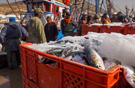 """هكذا تخدم اتفاقية الصيد شراكة """"رابح - رابح"""" بين المغرب وأوروبا"""