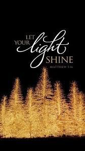 Lights on christmas trees