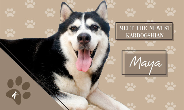 The Newest Kardogshian: Maya