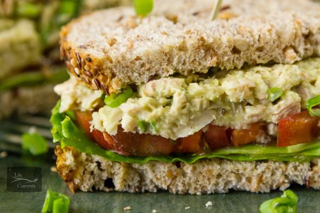 how to make chicken tuna sandwich