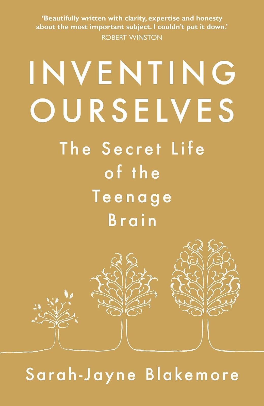 notes from the slushpile: are teenagers - and their brains - different?