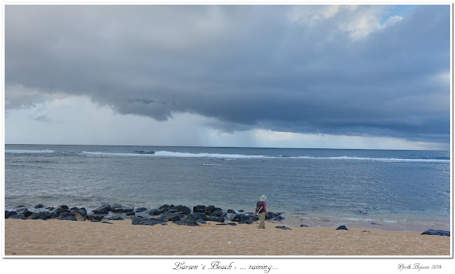 Larsen's Beach: ... raining...