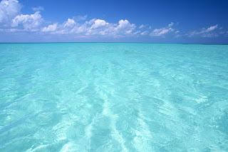 Deniz Nedir? Bilmen Gereken Herşey