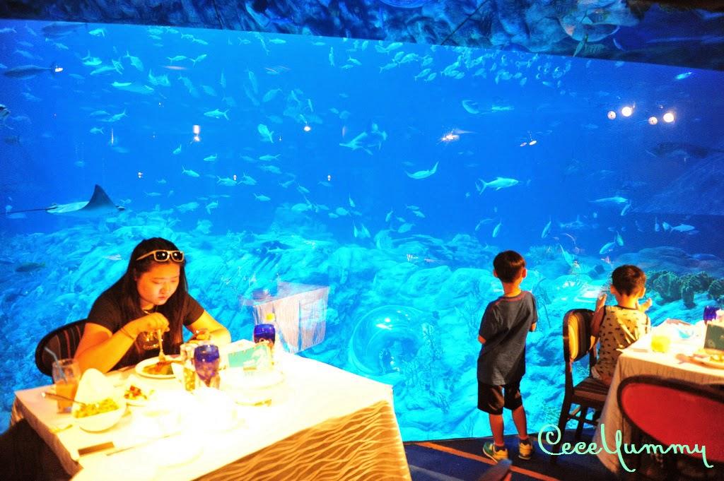 CeceYummy's Food Diary: 海龍王餐廳@海洋公園 - 極之失望的海洋生日午餐