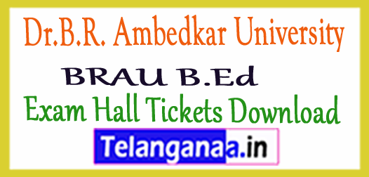 Dr.B.R. Ambedkar University BRAU B.Ed Exam Hall Tickets Download