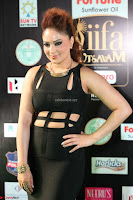Nikesha Patel in Beautiful Figure Hugging Black Dress  at IIFA Utsavam Awards 2017  Day 2 at  15.JPG