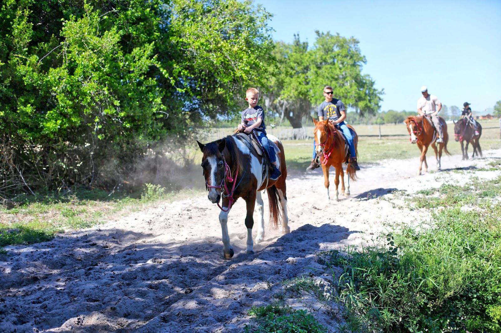 horse riding in dallas