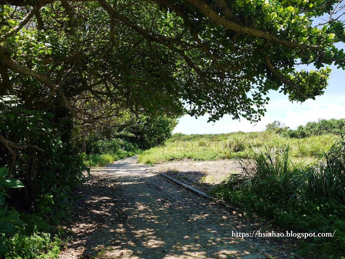 沖繩-景點-離島-外島-久高島-腳踏車道-自由行-旅遊-Okinawa-kudaka-island-bicycle-road
