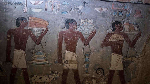 4,000-year-old Egyptian tomb opens to the public