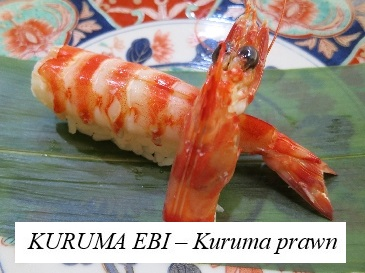 kuruma prawns