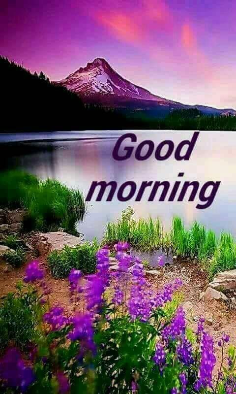 Good Morning Images New Good Morning Wallpapergood Morning Pic